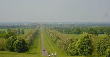 Wonderful family walks for Spring and Easter in Berkshire